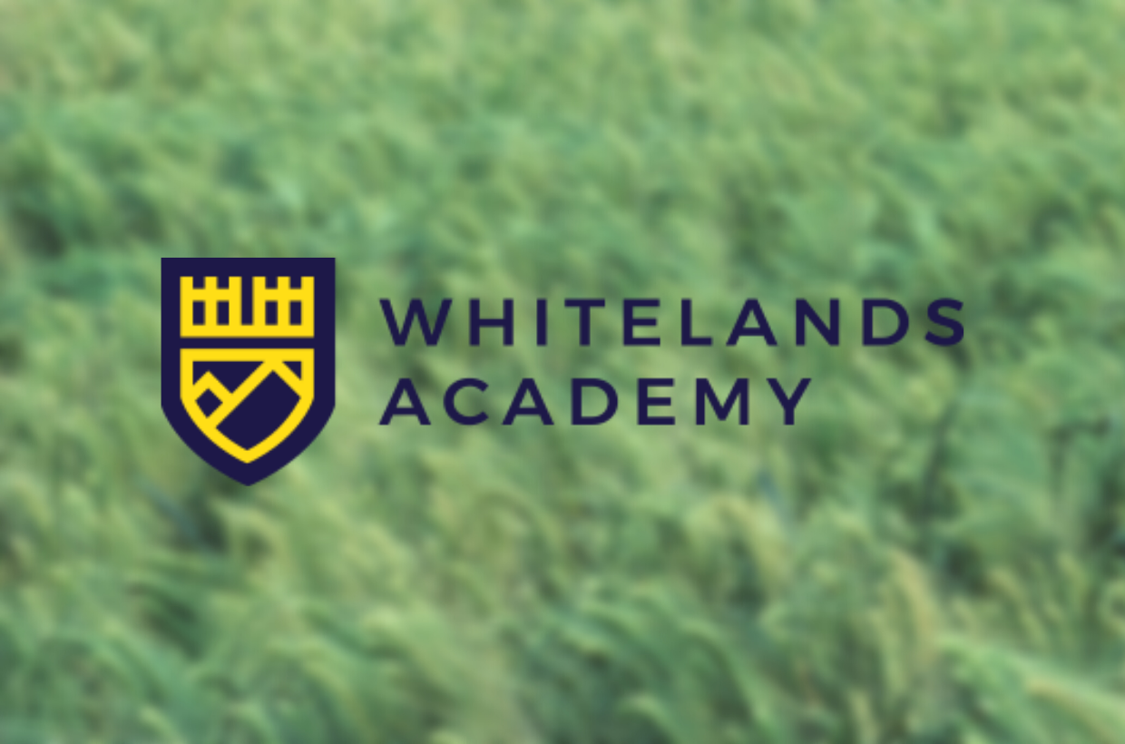 What's in a Name? Why We Picked 'Whitelands Academy'